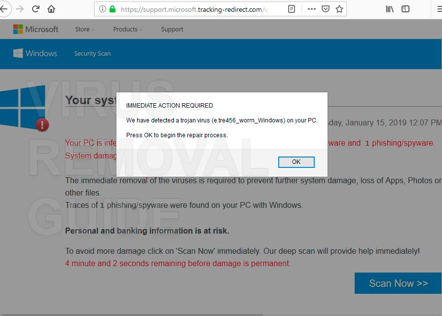 We have detected a trojan virus e.tre456_worm_windows
